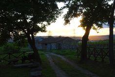 Fuga dalla città: la bellezza di Alviano in provincia di Terni   Non Solo Turisti
