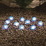 Give your borders and paths subtle illumination with these frosted blue LED globe lights.  #outdoorlighting  #bluemonday