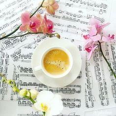 و تبقي قهوة #الصباح الوحيدة التي تتغلغل في النفس لتعزف أجمل السمفونيات و تعلن عن بداية يوم جديد مليء بالنشاط و الأمل  #صباح_الخير #good_morning