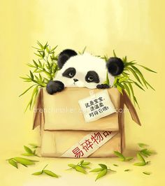 Bao Bao by trenchmaker