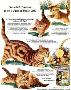 Puss 'n Boots canned cat food 1952 . I remember the awful smell of this stuff.our cats seemed to like it though. Old Advertisements, Retro Advertising, Retro Ads, Vintage Ads, Vintage Posters, Kittens Playing, Cats And Kittens, Cat Health Care, Sphinx