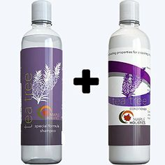 Tea Tree Oil Shampoo and Hair Conditioner Set  Natural Anti Dandruff Treatment for Dry and Damaged Hair  Best Gift Bundle for Men and Women  Sulfate Free  Safe for Color Treated Hair  USA Made >>> Check out the image by visiting the link.(It is Amazon affiliate link) #75likes