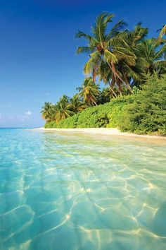 Tropical Paradise Beach Romantic Getaways: Consider a Tropical Paradise Tropical Paradise Beach. If your idea of a romantic getaway is a tropical paradise, then there are many places that you can g… Romantic Beach Photos, Beautiful Beach Pictures, Beautiful Beaches, Romantic Travel, Beautiful Islands, Beach Images, Romantic Vacations, Romantic Getaways, Pictures Of The Beach