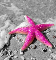 Splash of color ●❥❥●* ❤️ ॐ ☀️☀️☀️ ✿⊱✦★ ♥ ♡༺✿ ☾♡ ♥ ♫ La-la-la Bonne vie ♪ ♥❀ ♢♦ ♡ ❊ ** Have a Nice Day! ** ❊ ღ‿ ❀♥ ~ Sun 19th July 2015 ~ ❤♡༻ ☆༺❀ .•` ✿⊱ ♡༻ ღ☀ᴀ ρᴇᴀcᴇғυʟ ρᴀʀᴀᴅısᴇ¸.•` ✿⊱╮