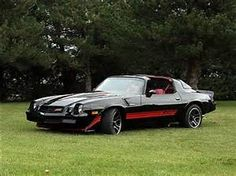 1980 Chevrolet Camaro Z28 T-Tops Maintenance/restoration of old/vintage vehicles: the material for new cogs/casters/gears/pads could be cast polyamide which I (Cast polyamide) can produce. My contact: tatjana.alic@windowslive.com