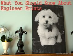 ENGINEER-PRINT-how-to