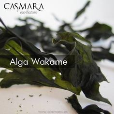 "WAKAME KELP activates 14 genes that are responsible for maintaining ""the triangle of beauty"" in perfect conditions. Helps to restore the extracellular matrix: Collagen, elastin and Hyaluronic Acid. Firmer and younger skin."