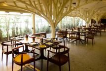 10 Top Restaurants in Mumbai for a Delicious Sunday Brunch: Indian: Neel