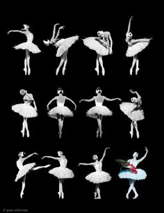 """passionatedancing: """"heathcliffsgirl: """" Photocollage of Lopatkina in """"The Dying Swan"""" by Gene Schiavone. [x] """" This is so beautiful """" Ballet Poses, Ballet Dancers, Ballerinas, Andrea Gomes, Ballet Companies, Russian Ballet, Photocollage, Ballet Beautiful, Beautiful Swan"""