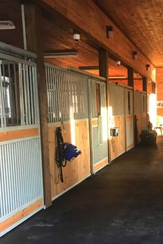 Dublin portable panel horse stalls offer a great portable or permanent horse stall solution. There are several ways to customize these stalls and they really can fit into almost any facility (fabricated after ordering). This horse stall allows for good ventilation and socialization, has no edges for your horse to chew, are easy to install, and have customization options available for feed doors and gates. #dublinstalls #rammstalls #freestandingstalls #horsebarn #horsestable #horsestalls #horses