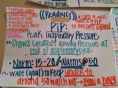 PIP Nursing Pins, Icu Nursing, Nursing Notes, Respiratory Therapy, Respiratory System, Np School, Mechanical Ventilation, Critical Care Nursing, Nursing Mnemonics