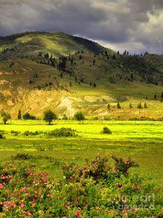 ✯ Okanagan, British Columbia, Canada https://www.stopsleepgo.com/vacation-rentals/british-columbia/canada