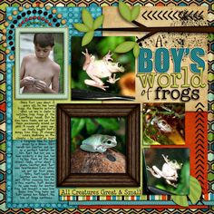 A Boy's World of Frogs - Two Peas in a Bucket