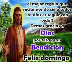 Feliz Domingo Gif, Morning Quotes Images, Ecards, Religion, Lds, Bella, World, Buen Dia, E Cards