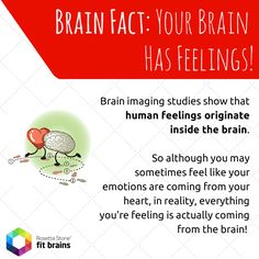 #Fact of the Day: Feelings originate from the brain, not the heart!  Learn more about your #brain: http://taps.io/fitbrains #fun #learn #health