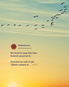 Wo khud hi naap lete hain Bulandi aasmaan ki Parindon ko nahi di jati Taleem udaano ki.. To know more visit my Blog. #quotes #lifequotes #life #lifequotes Silence Quotes, Love Quotes Poetry, Good Thoughts Quotes, Attitude Quotes, Shyari Quotes, Motivational Picture Quotes, True Quotes, Words Quotes, Sayings