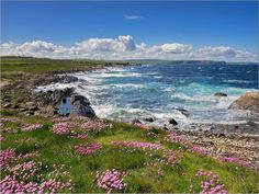 Rosehearty coastline on the North Sea, Aberdeenshire, Scotland Beauty Around The World, Around The Worlds, Aberdeenshire Scotland, Cairngorms National Park, North Sea, Beautiful Landscapes, Abundance, Thrift, Seaside