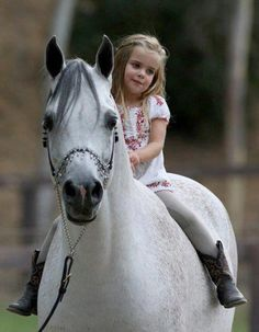 Adorable little girl and her Arabian