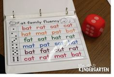 Over the last few weeks, weve been working really hard on learning word families! We do this...