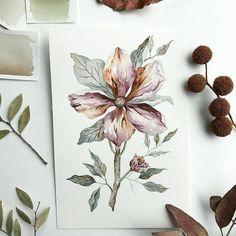 Watercolorist: @molluskgrl #waterblog #акварель #aquarelle #painting #drawing #art #artist #artwork #painting #illustration #watercolor #aquarela