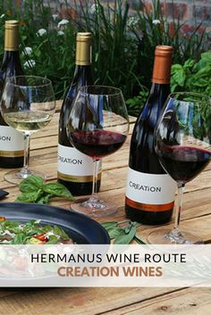 """""""Creation Wines in Hermanus offers informative vineyard and cellar tours, relaxed wine tasting and innovative food and wine pairings. Wine Pairings, Wine Wednesday, Sauvignon Blanc, Pinot Noir, Wine Making, Cellar, Wine Recipes, Red Wine, Vineyard"""