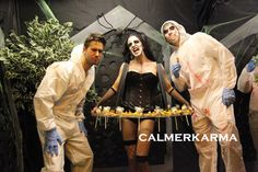 Halloween themed Canape hostesses and canape hosts to hire across the UK delivering your canapes with a delicious smile and a little theatre. Halloween Fright Night, Uk Parties, Terrifying Halloween, Halloween Entertaining, Zombie Dolls, Candy Costumes, Little Theatre, Halloween Party Themes, Poses For Photos