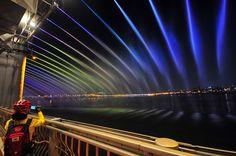 Banboo bridge in Korea