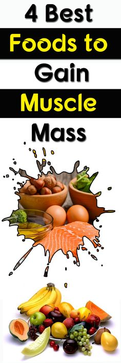 4 Best Foods to Gain Muscle Mass (Ready)