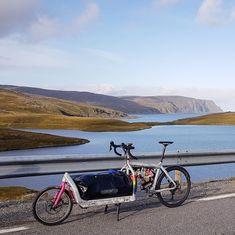 Dundee, Bullitt Cargo Bike, Bike Components, Bike Storage, Longboards, Cycling Bikes, Scooters, Bicycles, Larry