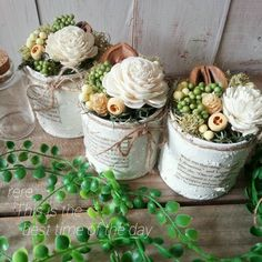 Cactus, Centerpieces, Table Decorations, Deco Floral, How To Preserve Flowers, Dried Flowers, Diy Tutorial, Tablescapes, Planting Flowers