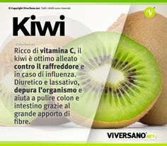 Healthy Mind, Healthy Habits, Healthy Choices, Healthy Recipes, Kiwi, In Natura, Health Coach, Health And Wellness, Healthy Lifestyle