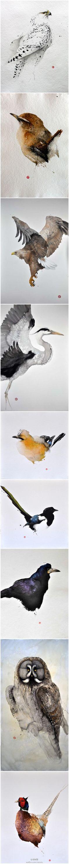 @范特曦 水彩鸟儿。。。美翻了。。。看得我快哭了。。。来自艺术家 Karl Martens