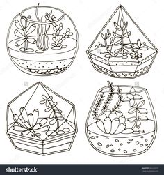 coloring pages - Hand drawn terrarium with succulent plant Pattern Coloring Pages, Cute Coloring Pages, Adult Coloring Pages, Coloring Books, Bullet Journal Art, Bullet Journal Ideas Pages, Bullet Journal Inspiration, Terrarium, Succulents Drawing