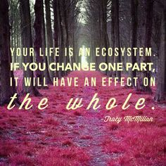 """Your life is an ecosystem. If you change one part, it will have an effect on the whole. - author Tracy McMillan from the book """"Why you're not married--yet"""" Favorite Quotes, Best Quotes, Life Quotes, Tracy Mcmillan, Ring True, You Changed, Self Love, The Book, Motivational Quotes"""
