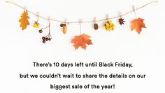 Get a sneak peek at the details for our BIG BLACK FRIDAY SALE!
