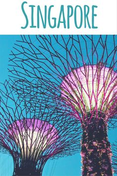 Singaporean travel blogger Jaclynn Seah tells you her insider tips for Singapore – the best time to travel there, accommodation, restaurants and sights.