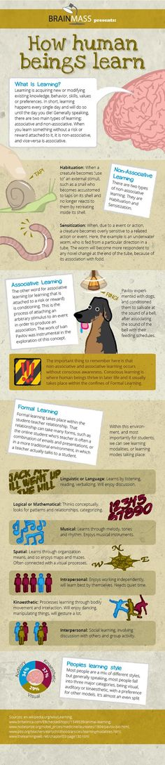 How Human Beings Learn. #Psychology #learning #infographic