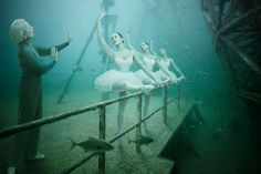 An original concept by photographer Andreas Franke with this exhibition entirely under water in a boat abandoned on the artificial reef off Key West.