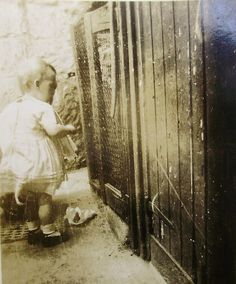 Vintage Photo  Child at the Chicken Coop by LoosLoft on Etsy, $3.25