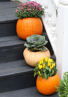 Pretty way to style pumpkins that's a bit unconventional.
