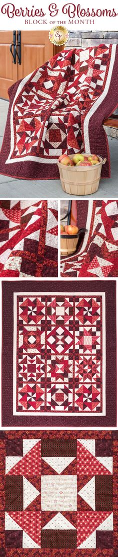 """Berries & Blossoms BOM Create a gorgeous and inviting quilt for your home with the Berries & Blossoms Quilt! Stunning pieced blocks overflow with varying shades of red creating a dynamic and eye-catching look. Designed right here at Shabby Fabrics, this quilt is a Shabby Fabrics Exclusive! Quilt finishes to approximately 54½"""" x 67½"""". This Block of the Month program begins in February 2018 and will continue through August 2018."""