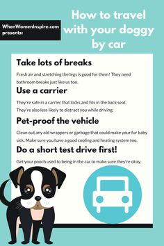 Your pets checklist! How to travel with a dog in a car #petcare #dogtrainingtips #dogcare #traveltips #travelhacks #roadtrip Dog Travel, Time Travel, Travel Tips, Blogger Help, Dog Blanket, Dog Hacks, Pet Carriers, Medical Prescription, Dog Training Tips