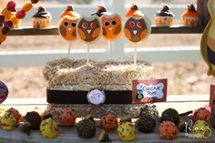 Owl cookie pops at a Thanksgiving party!  See more party planning ideas at CatchMyParty.com!