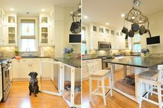 8 Genius Solutions for Your Pets in the Kitchen