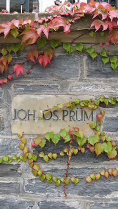 J.J. Prum