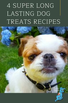 Commercial dog treats contain preservatives to give them a long shelf life, but have you ever wondered how to make long lasting dog treats at home? THese long lasting dog treat recipes are sure to be a hit with your dog, including a recipe for DIY long lasting dog chews. Diy Dog Treats, Homemade Dog Treats, Dog Treat Recipes, Dog Food Recipes, Dog Lover Gifts, Dog Lovers, Long Shelf, Dog Chews, Shelf Life