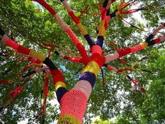 guerillla crochet. Because trees get cold too.