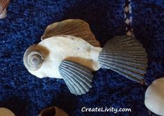 5+ DIY Seashell Crafts, seashell ideas