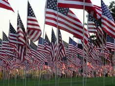 Waves of Flags Memorial at Pepperdine University's Alumni Park http://www.conejovalleyguide.com/welcome/2014-pepperdine-university-waves-of-flags-display-in-honor-o.html