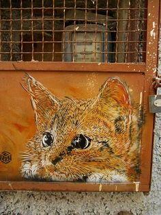 C215, world's best street art, urban art, graffiti artists, street artists, free walls, wall murals.
